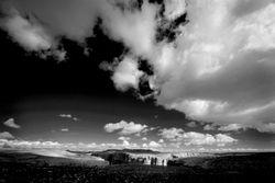 Arizona in Black and White