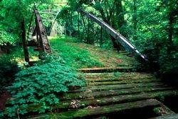 Bono Bridge