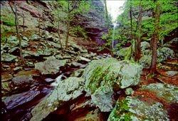Cedar Creek at Petit Jean SP, Arkansas