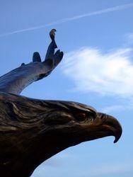 Mockingbird and Eagle
