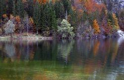 Early morning at Bohinj lake