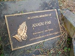 PALL Anadu