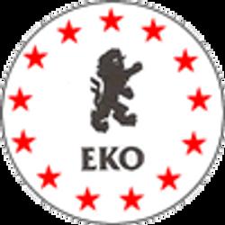 E.K.O Governing Body