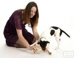 Animal rescue fundraising project for Mira Fertin Photography, 2012