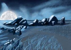 The Night Shore