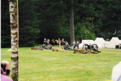 Confederate artillery at Silver Falls, 1993