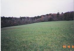 A view of the Chickamauga battlefield.