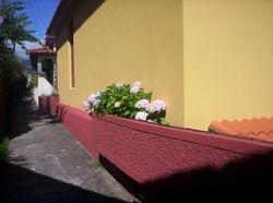 Facade bordering on the alley