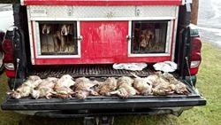 Rabbit Hunting 1-11-14