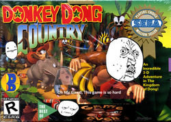 Donkey Dong Country