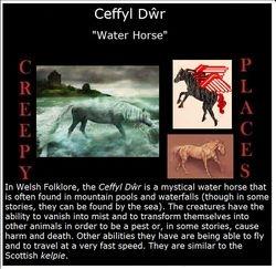 Ceffyl Dŵr