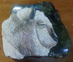 Buffalo on Labradorite