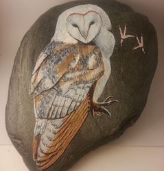 owl on river stone