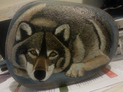 wolf on river stone