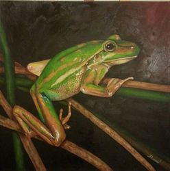 Gold and green bell frog