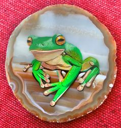 frog on Agate