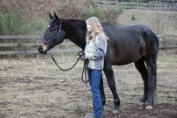 Harley and Cristal at Medicine Horse session March 2009