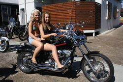THE GIRLS ON DAVES 08 SOFTAIL