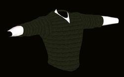Male Green Sweater Model
