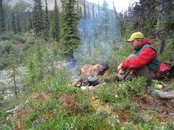 Smoke Creek Camp
