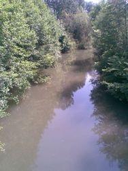 Reka Crnica
