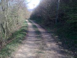 Put do crkve