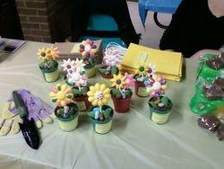 Fraim Center Spring Display