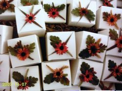 Fall theme Cup Cake boxes