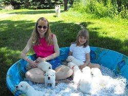 how fun can a kiddie pool be?