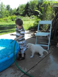 boys, fire hoses, and puppies. what a life!