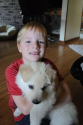 a boy and his dog (Logan)