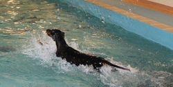 Bria goes swimming