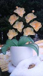 Orhideja iz najlonk: MARELICNO - BELA