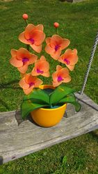 Orhideja iz najlonk: ORANZNO-ORHIDEJNO VIJOLICNA
