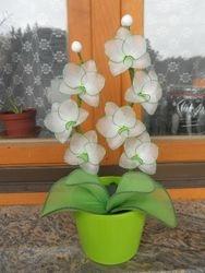 Orhideja iz najlonk: BELO-ZELENA