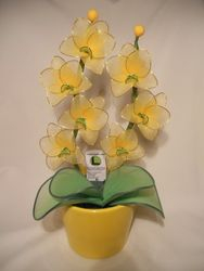Orhideja iz najlonk: RUMENO-ZELENA