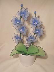 Orhideja iz najlonk: SVETLO MODRO-BELA