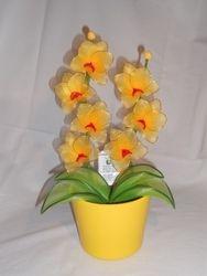 Orhideja iz najlonk: RUMENO-RDECA