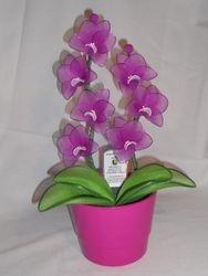 Orhideja iz najlonk: ORHIDEJNO VIJOLICNO-BELA