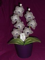 Orhideja iz najlonk: BELO-TEMNO VIJOLICNA