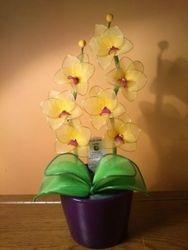 Orhideja iz najlonk: RUMENO-ORHIDEJNO VIJOLICNA