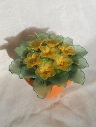 Primula iz najlonk: RUMENA