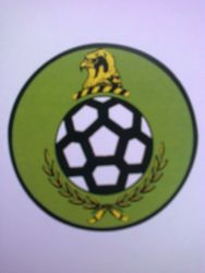 Subbuteo crest