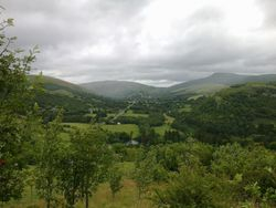View from the Giant