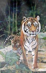 Tiger and Cub $55