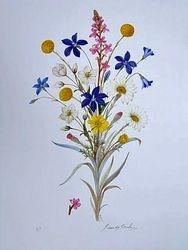Alpine Flora $60