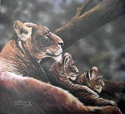 Lioness & Cubs $70