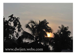 Morning in my village