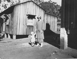 Mrs Harriet Sheen & Gordon Howie's Cottages