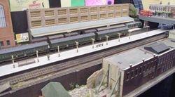 LMS emu in station